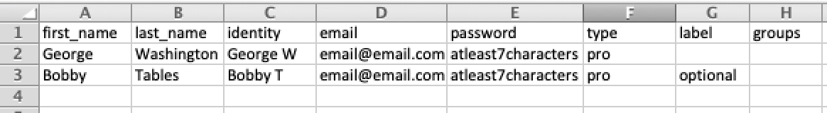 Screenshot of sample CSV file for Business Licenses