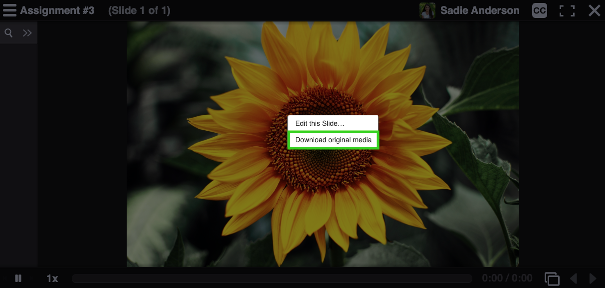 Screenshot illustrating the button to download slide media